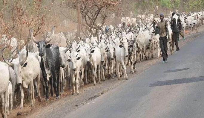 FG Begins Ruga Settlements in Plateau, Kaduna, Other States