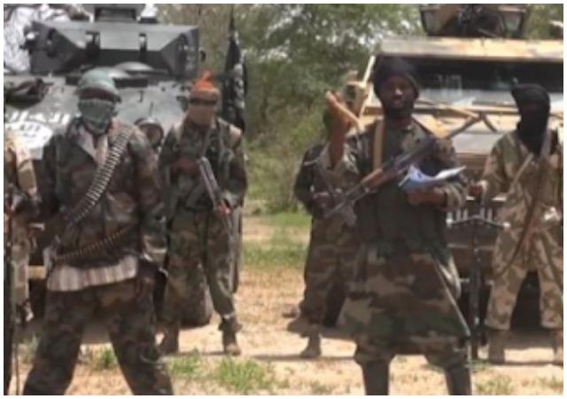 #Boko Haram: 8 Dies In Fresh Attack In Borno